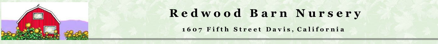 Redwood Barn Nursery logo